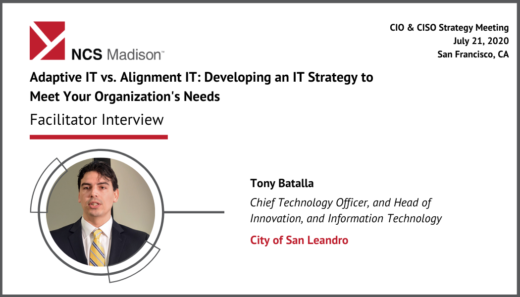 Finding the Balance between Adaptive IT and Alignment IT